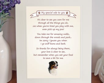 Thank You FROM THE DOG 8 x 10 Picture//10x8 Print Fun Gift Brown Bearded Collie