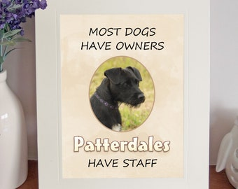 PATTERDALE TERRIER 8 x 10 Free Standing A HOUSE IS NOT A HOME Picture Lovely Gift Fun Novelty Dog Print