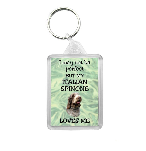 Ideal Present//Gift I/'m Happily Owned By A Labradoodle Novelty Keyring