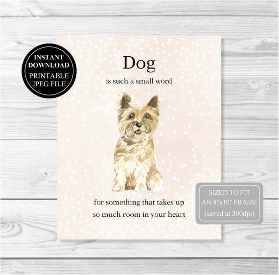 Yorkshire Terrier//Yorkie Dog A5 Writing Paper With Envelopes Craft Novelty Gift