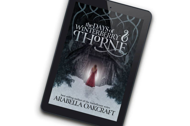 WinterberrySPECIAL EDITION Premade Ebook Cover for Indie image 0