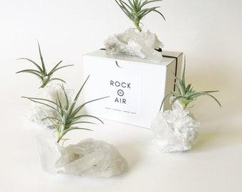 Clear Quartz, Crystal, Air Plant Holder, Mini Planter, Air Plants, Boho Decor, Desk Decor, Cubicle Decor, Office Planter, Desk Accessories