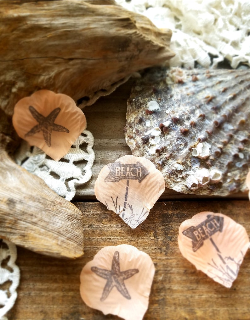 Rustic Beach Party Ideascoral Shell Confettibeach Theme Etsy