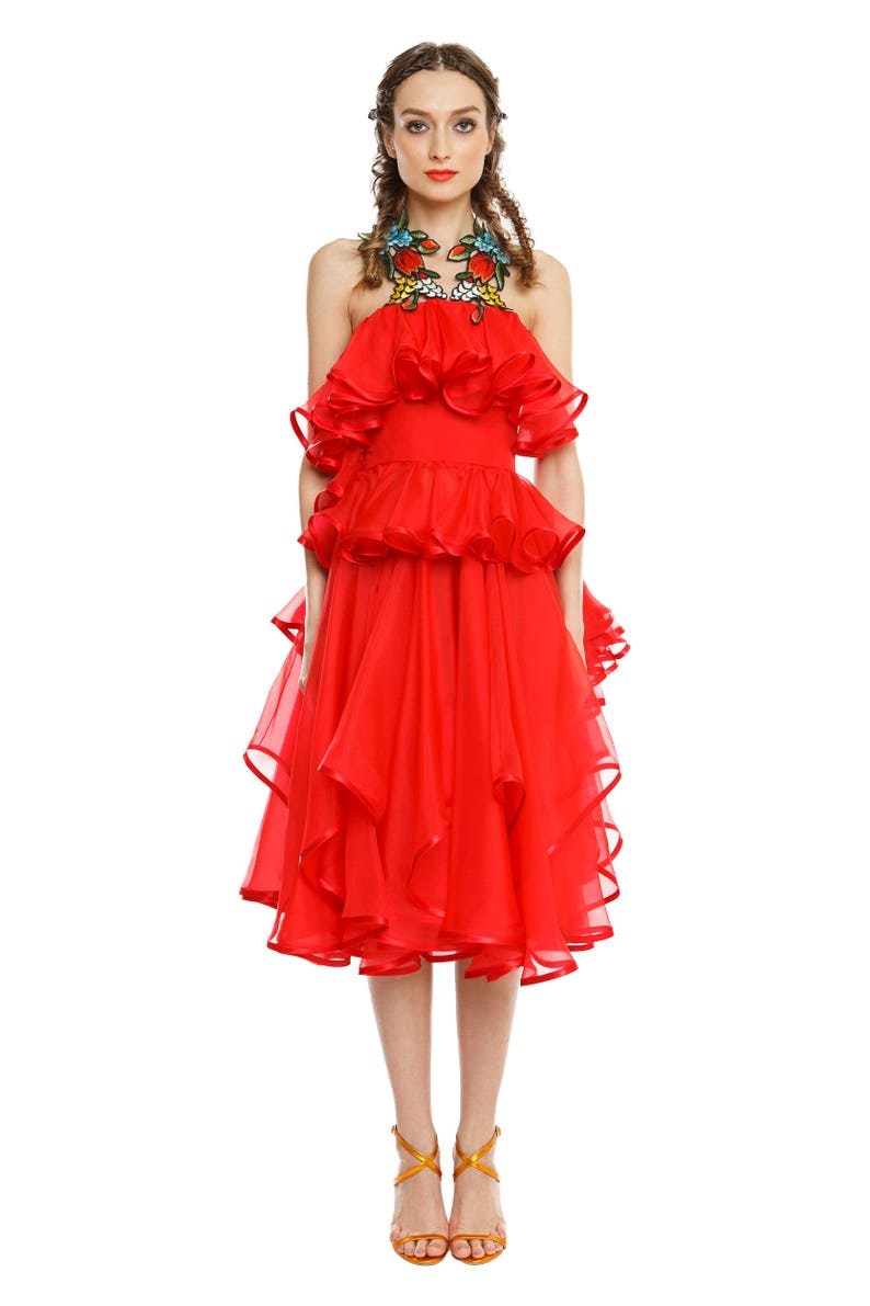 Ruffles organza dress with handmade embroidery image 0