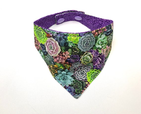 Succulent Dog/Cat Bandana