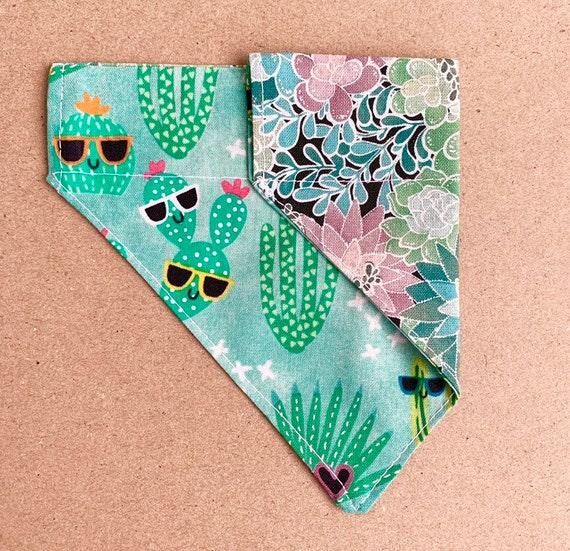 Succulents and Cactus Reversible Pet Bandana