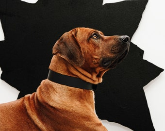Classic Black BioThane® dog collar, Waterproof collar, Vegan collar, Heavy Duty collar, eco-friendly