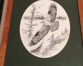 Framed/Matted Osprey print