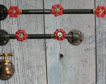 Steampunk Industrial Combination Hanger Bar & Hat Racks