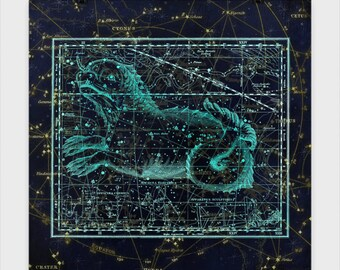 Machina Electra Star Chart Poster The beauty of the Astrological world. These star charts bring mythology to life in stunning accuracy.
