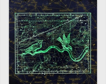 Noctua Star Chart Poster Experience the beauty of the Astrological world. These star charts bring mythology to life in stunning accuracy.
