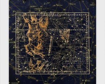 Orion Star Chart Poster Experience the beauty of the Astrological world. These star charts bring mythology to life in stunning accuracy.