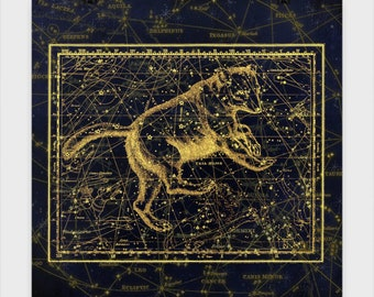Ursa Major Chart Poster Experience the beauty of the Astrological world. These star charts bring mythology to life in stunning accuracy.