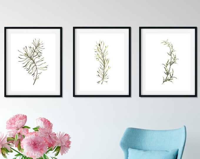 Set of 3 Art Prints, Botanical illustration, Farmhouse decor, Botanical wall art, Leaves watercolor, Printable botanical set,