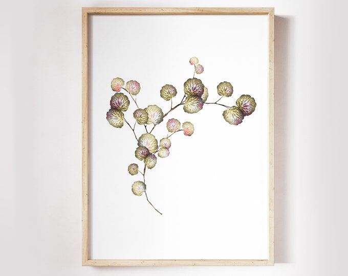 Wild Flower Wall Art, Botanical Wall Art, Floral Print Set Printable PL-1