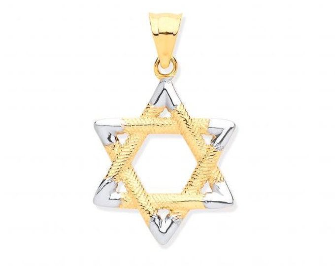 9ct 2 Colour Gold 1.5cm Rope Embossed Pattern Star of David Pendant