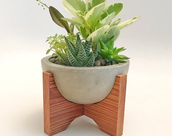 Midcentury modern, handmade, concrete small bowl planter with redwood stand