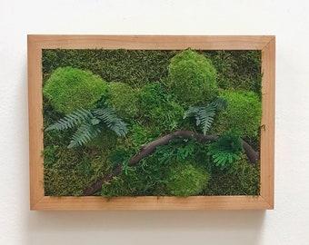 """Moss art 13""""x9"""" handmade frame, living wall, no maintenance"""