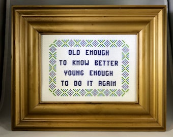 Old Enough to Know Better Funny Cross Stitch