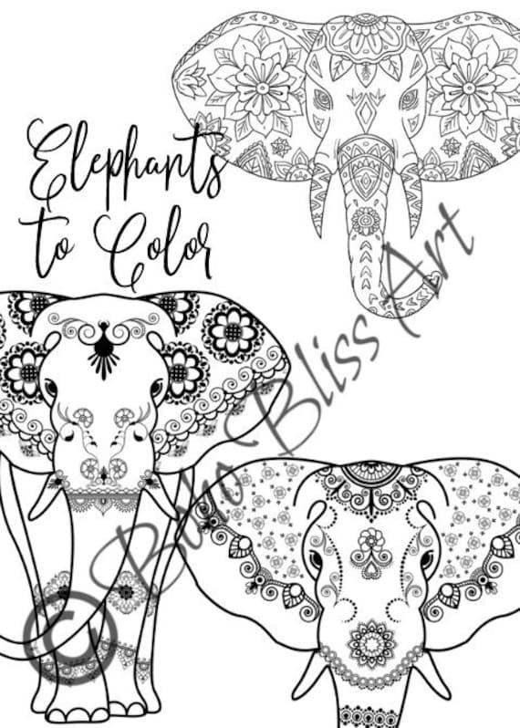 Erwachsene Farbblätter Elefanten Mandalas Diy Seiten Zur Farbe Macht Das Perfekte Geschenk Für Den Elefanten Lover Oder Für Sich Selbst