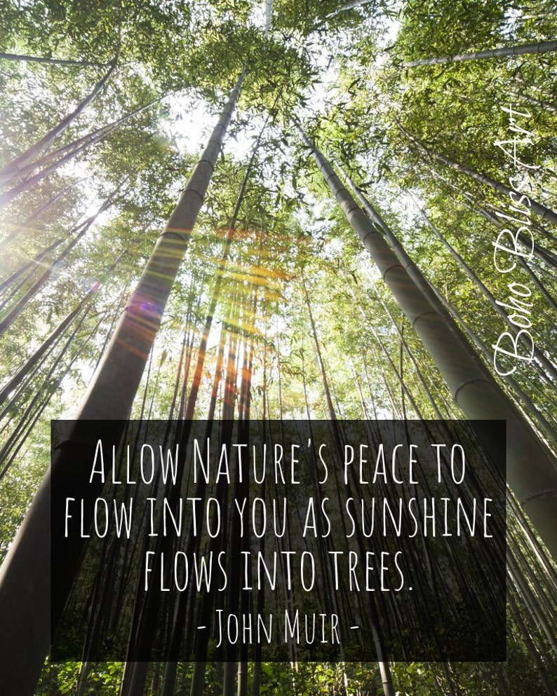 John Muir Quote Allow Natures Peace To Flow Into You As Etsy
