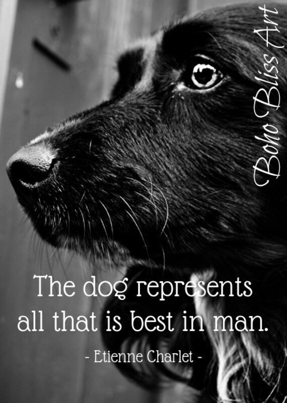 Etienne Charlet Quote The Dog Represents All That Is Best In Etsy Classy Download Good Quote About Dog