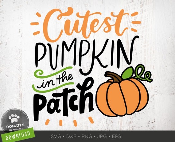 Cutest Pumpkin In The Patch Svg Clipart Kids Halloween Svg Etsy