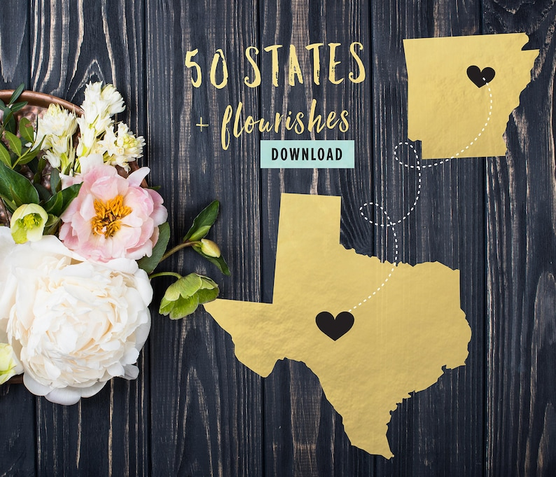 50 State Shapes Cut File Bundle for Cricut 50 United States SVG Bundle for Silhouette 50 States SVG Bundle Flourishes Commercial 793 Files