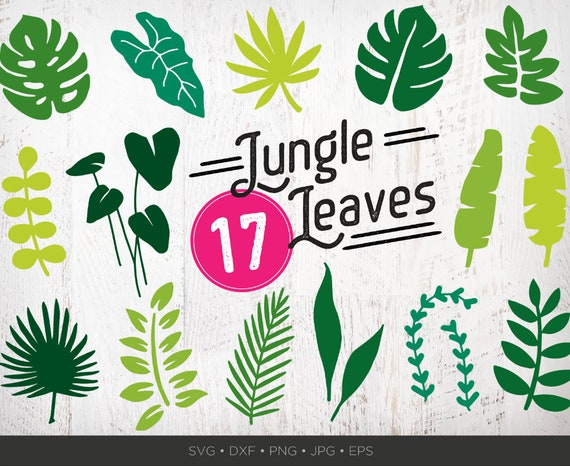 17 Jungle Leaves Svg Bundle Jungle Svg Bundle Leaves Clipart Etsy