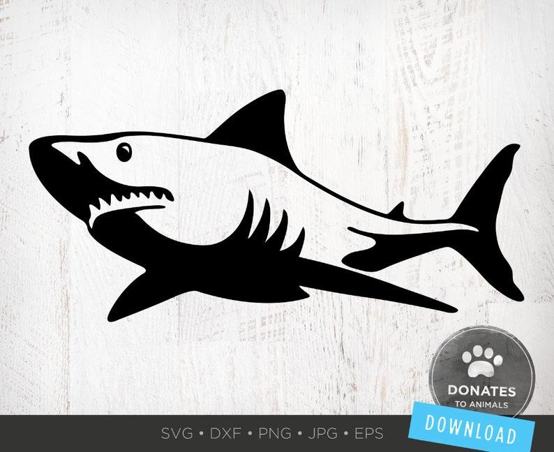 Shark SVG Shark Clipart Sharks Mascot Svg Shark Png Great ...