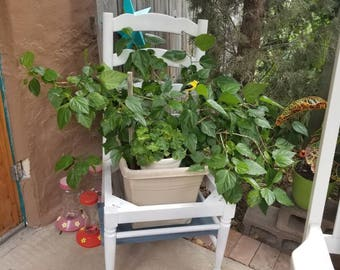 Unique plant stands-local pick up/delivery only