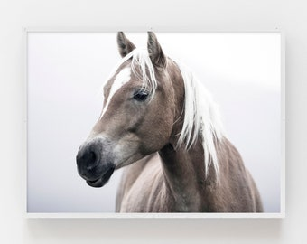 Horse Print Etsy