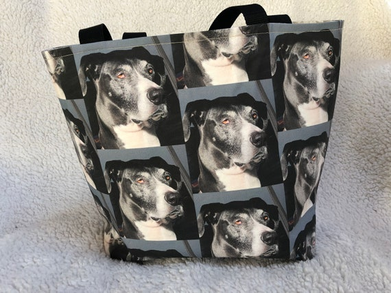 Customizable Animal Fabric Project Bag