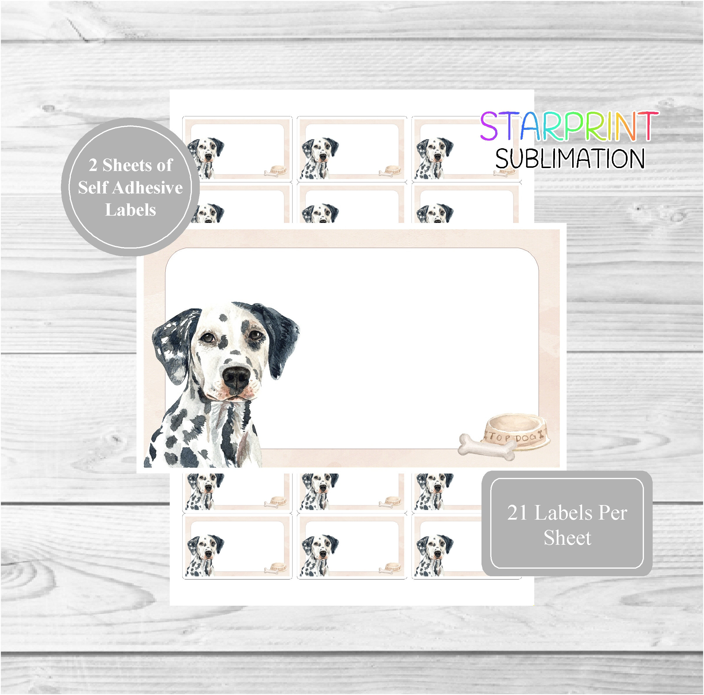 Pointer Dog 42 Self Adhesive Stickers Blank Address Labels//Fun Gift Tags