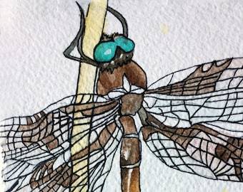 Original Watercolor Painting: Prince Baskettail Dragonfly Nature Painting