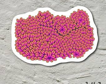 Coral Reef Stickers Coral Crazy Collection