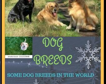 Dog Breed Printable Package