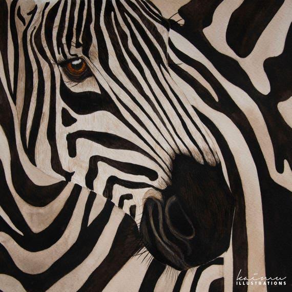 limited edition zebra zebra african animals zebra print etsy