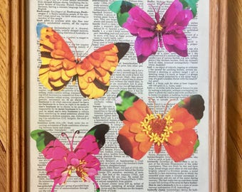 Zinnia Butterflies on Vintage dictionary page, 8 x 10