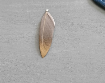 4 feathers gray mole with golden glitters. 5.5 cms.