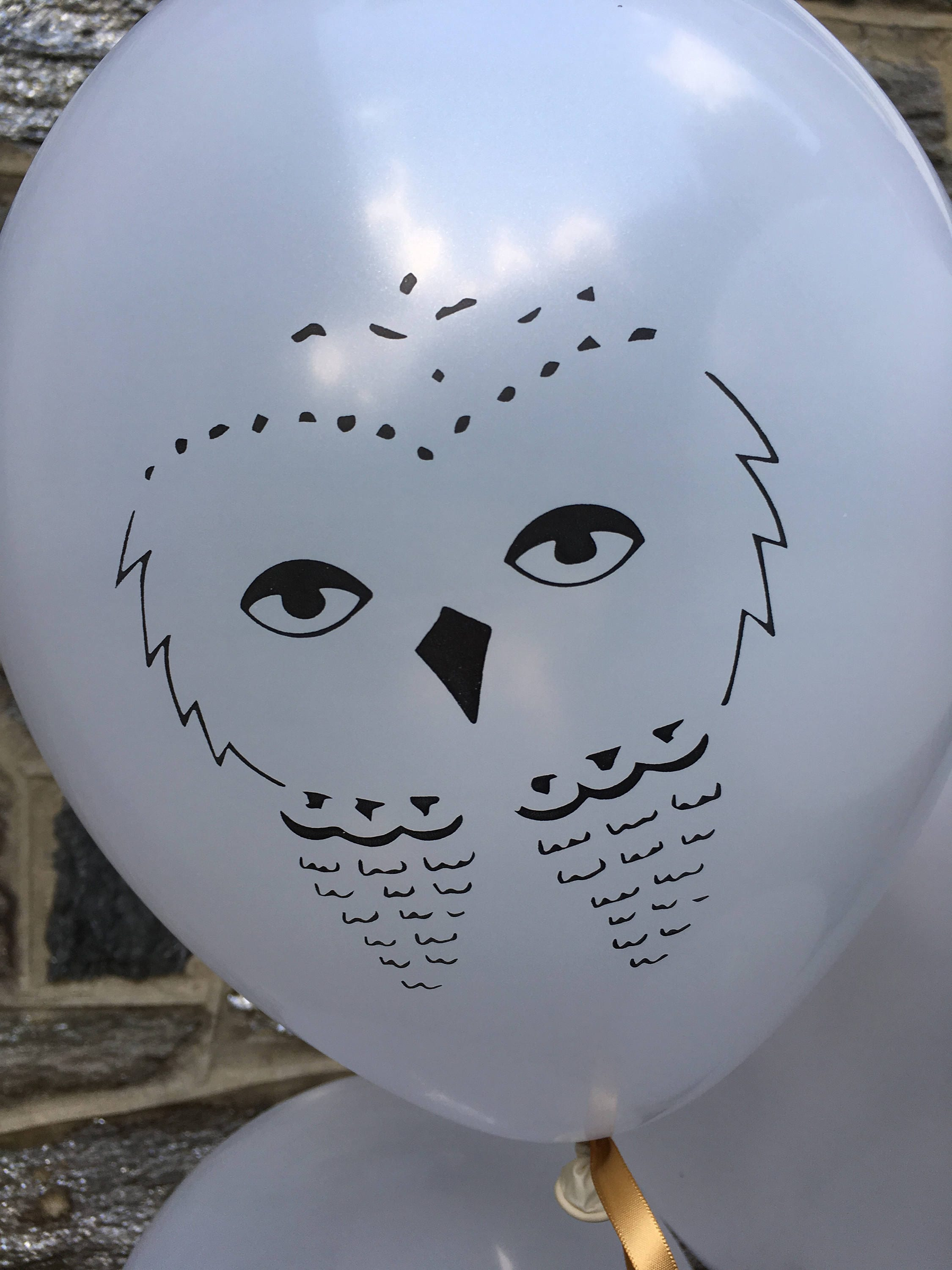 Potter-Themed Owl Balloons White Latex 6 CT Hedwig | Etsy