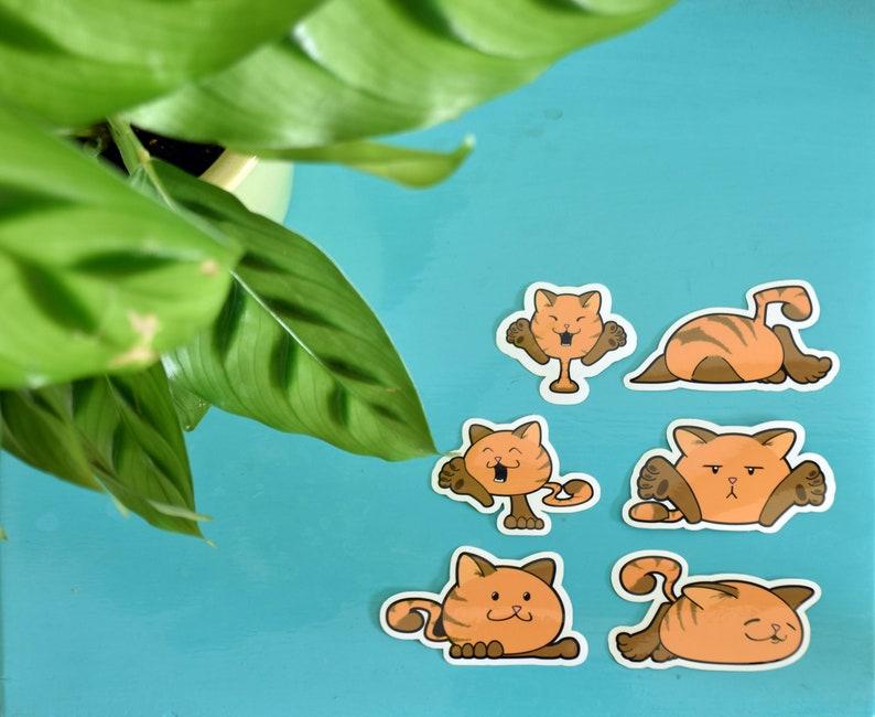 6 schattige katten stickers  Illustratie op vinyl  Goede image 0