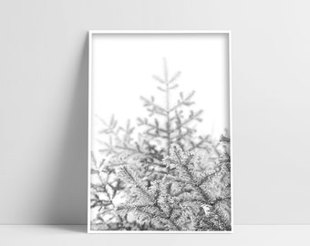 Winter Pine Tree Digital Print Winter Branches Downloadable Prints Printable Tree Art Forest Photography Winter Wall Art Pine Tree Poster