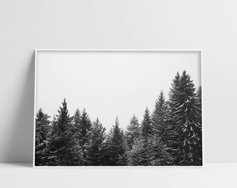 Forest Printable Art Winter Forest Print Pine Tree Poster Downloadable Prints Snow Photography Instant Download Digital Art Black And White