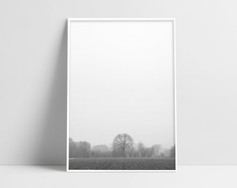 Visual Monochrome Arts