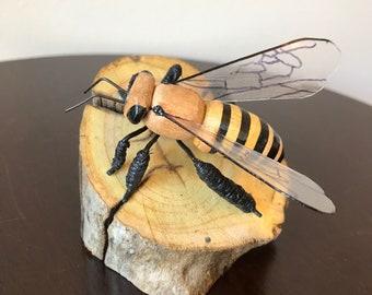 Solitary Bee on Yellowwood Driftwood Stump S-9