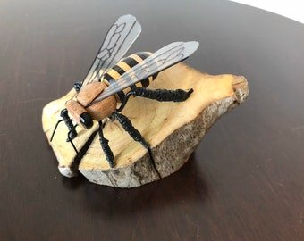 Solitary Driftwood Bee S-1