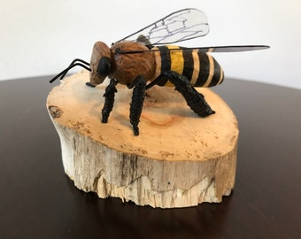 Solitary Driftwood Bee S-8