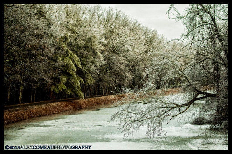 Frozen River  Ice Winter Snow Forest Woods Art New image 0