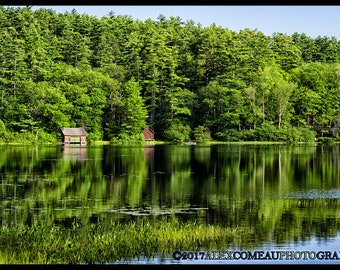 A Sea of Green - Forest, Woods, Water, River, Lakes, Art, New Hampshire, Photography, Photograph, Photo, Canvas, Frame, Picture, New England